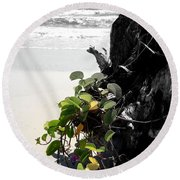Live And Dead Round Beach Towel
