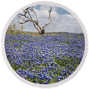 Live Bluebonnets And Dead Tree Round Beach Towel