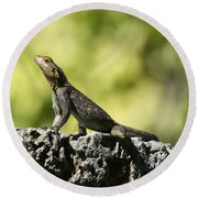 Lizard On The Wall Round Beach Towel