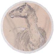 Llama Drawing Round Beach Towel