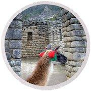 Llama Touring Machu Picchu Round Beach Towel