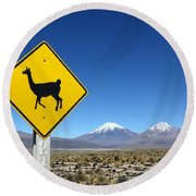 Llamas Crossing Sign Round Beach Towel