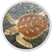 Loggerhead Turtle Round Beach Towel