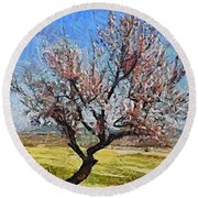 Lone Almond Tree In Bloom Round Beach Towel