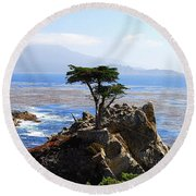 Lone Cypress Tree In Monterey In California Round Beach Towel