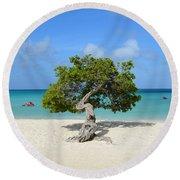 Lone Divi Tree In Aruba Round Beach Towel