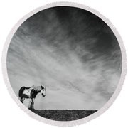 Lone Horse Round Beach Towel by Julian Eales
