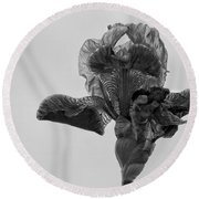 Lone Iris Black And White Round Beach Towel