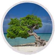 Lone Tree - Aruba Round Beach Towel