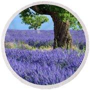 Lone Tree In Lavender Round Beach Towel