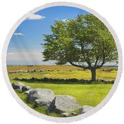 Lone Tree With Blue Sky In Blueberry Field Maine Round Beach Towel
