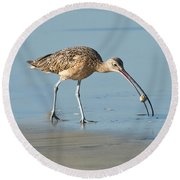 Long-billed Curlew Catching Crab Round Beach Towel