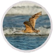 Long-billed Curlew Flying Over The Surf Round Beach Towel