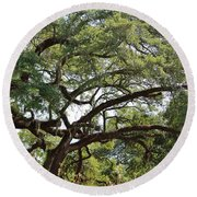 Long Branches Round Beach Towel
