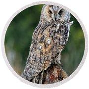 Long-eared Owl 4 Round Beach Towel