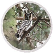 Long Eared Owl At Attention Round Beach Towel