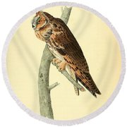 Long Eared Owl Round Beach Towel