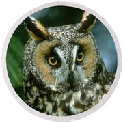 Long-eared Owl Up Close Round Beach Towel