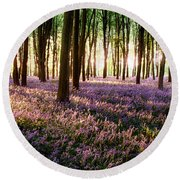 Long Shadows In Bluebell Woods Round Beach Towel