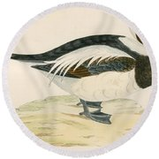 Long Tailed Duck Round Beach Towel