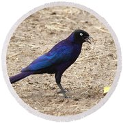 Long Tailed Glossy Starling  Round Beach Towel