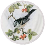 Long Tailed Tit And Rosehips Round Beach Towel
