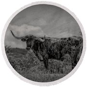Longhorn Of Bandera Round Beach Towel