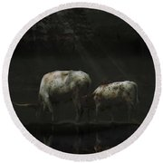 Longhorns Reflections At The Pond Round Beach Towel
