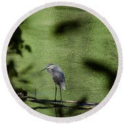 Look Through The Trees Round Beach Towel