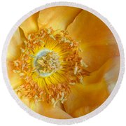 Look Within Round Beach Towel
