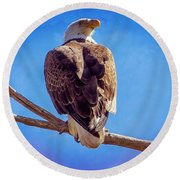 Looking Right Round Beach Towel by Bob Hislop