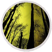 Looking Through The Naked Trees  Round Beach Towel