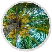 Looking Up A Coconut Tree Round Beach Towel