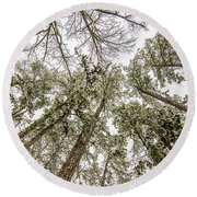 Looking Up At Snow Covered Tree Tops Round Beach Towel