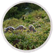 Lost Amongst The Vines Round Beach Towel