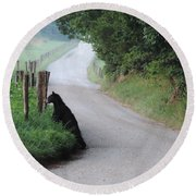 Lost Bear Cub In Cades Cove Round Beach Towel