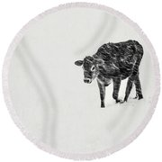 Lost Calf Struggling In A Snow Storm Round Beach Towel