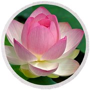 Lotus 7152010 Round Beach Towel