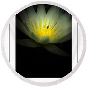 Lotus And Bee Poster Round Beach Towel