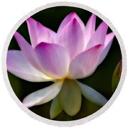 Lotus And Buds Round Beach Towel by Susan Candelario