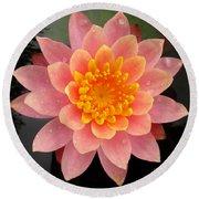 Lotus Bloom Round Beach Towel