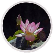 Lotus Enchantment Round Beach Towel