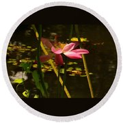 Lotus Flower At The West Lake Round Beach Towel
