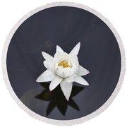 Lotus Flower- Gungarre Billabong V4 Round Beach Towel