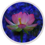 Lotus Flower In Blue Round Beach Towel