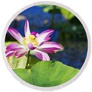 Lotus Flower V6 Round Beach Towel