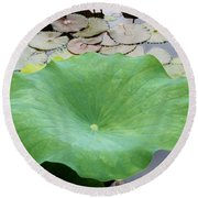 Lotus Leaf Round Beach Towel