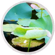 Lotus Lilly Pond Round Beach Towel