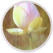 Lotus Looking To Bloom Round Beach Towel