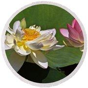 Lotus Pink -- Lotus White And Gold Round Beach Towel